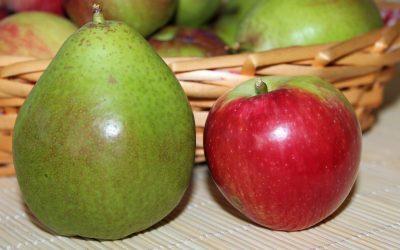 Das Vergleichen – oder warum es im Netz wie in einem Obstgarten zugeht